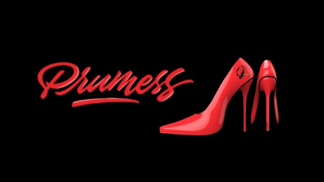 PRUMESS